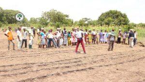 Recherche participative à Atti-apédokoè