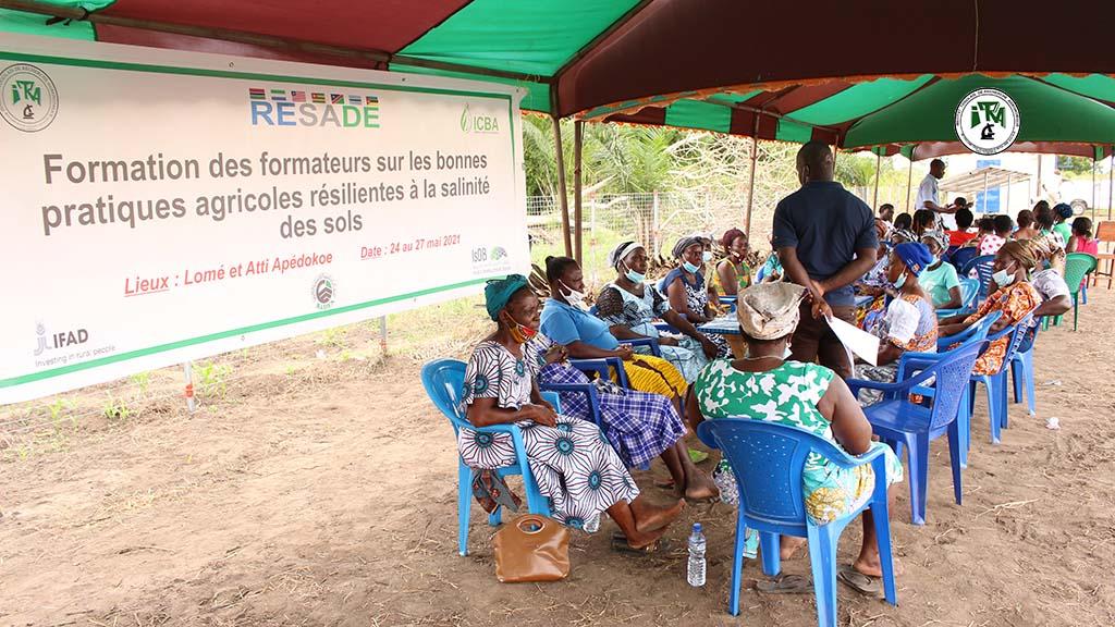 Recherche participative de l'équipe du projet RESADE avec les agriculteurs d'Atti-apedokoé
